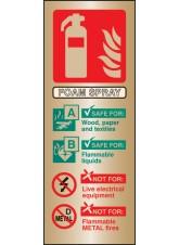 Foam Spray Extinguisher Identification - Brass